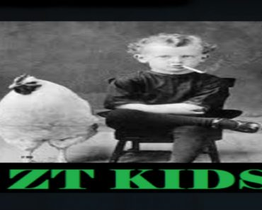 ZT Kids addon on kodi