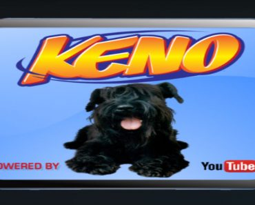 Keno addon for kodi