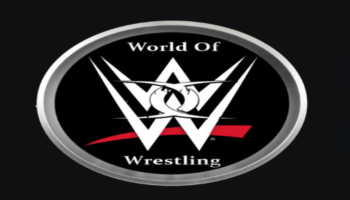 How To Install World Of Wrestling Addon On Kodi